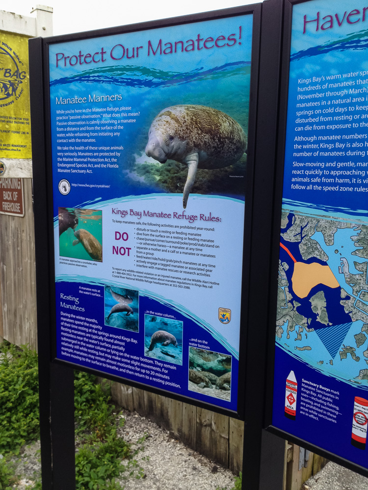 Manatee protection signs