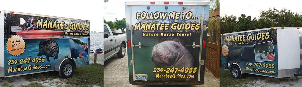 Manatees, Manatee Guides, Carol Grant photos, kayaks,