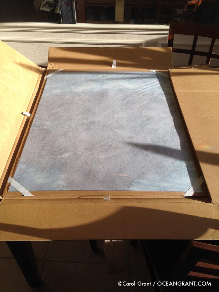 careful packaging, manatee print, 24X30