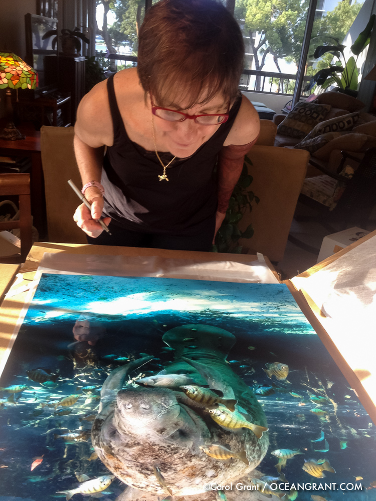Manatee print, Carol Grant, signing