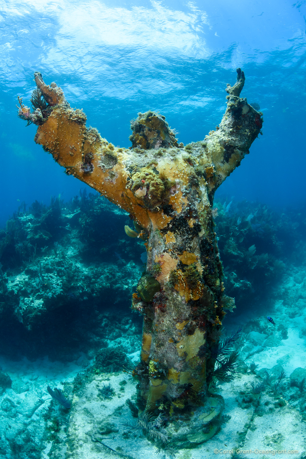 Christ of the Abyss,©CGrant-oceangrant.com