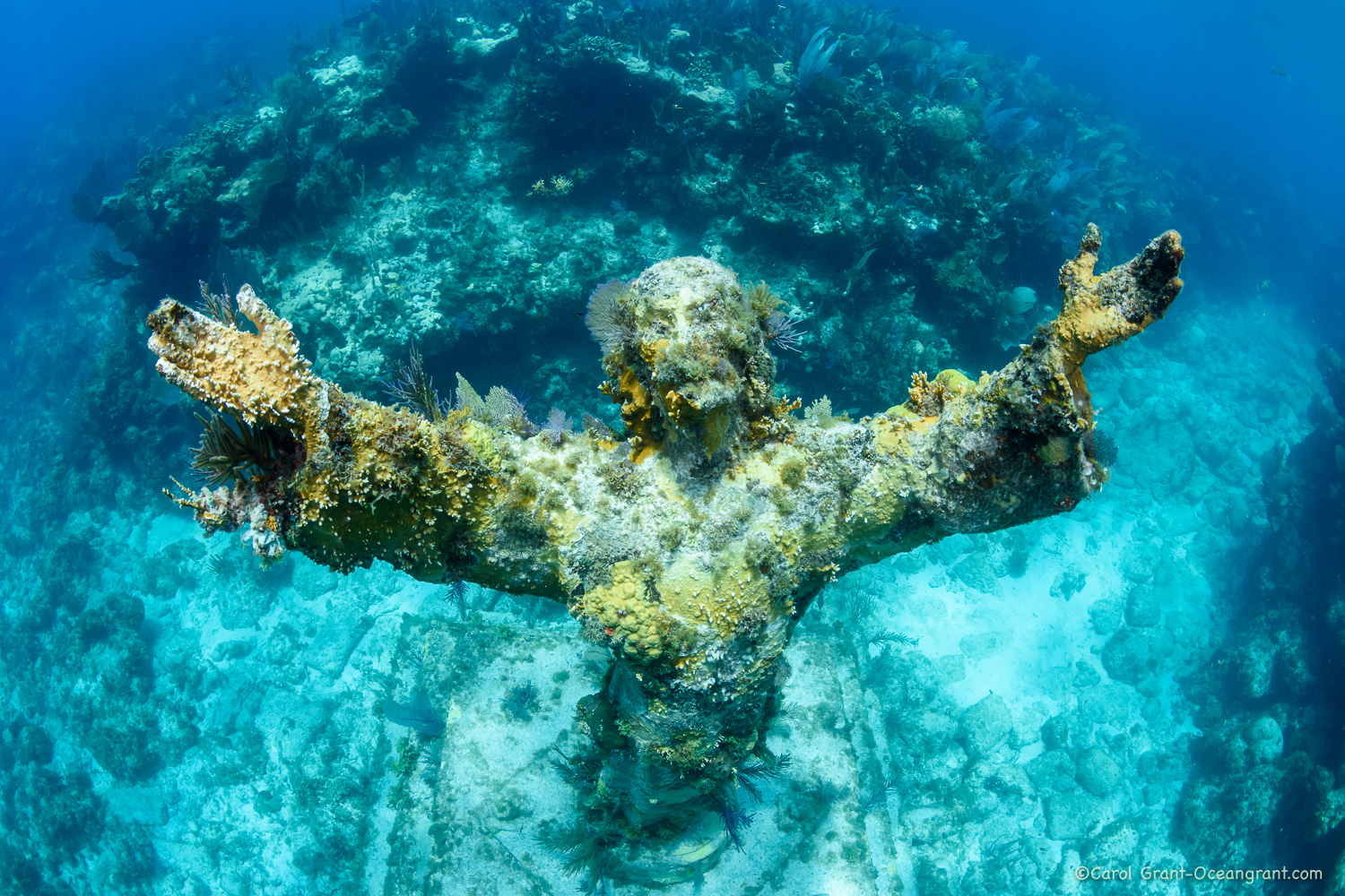 Christ of the Abyss from above,©CGrant-oceangrant.com