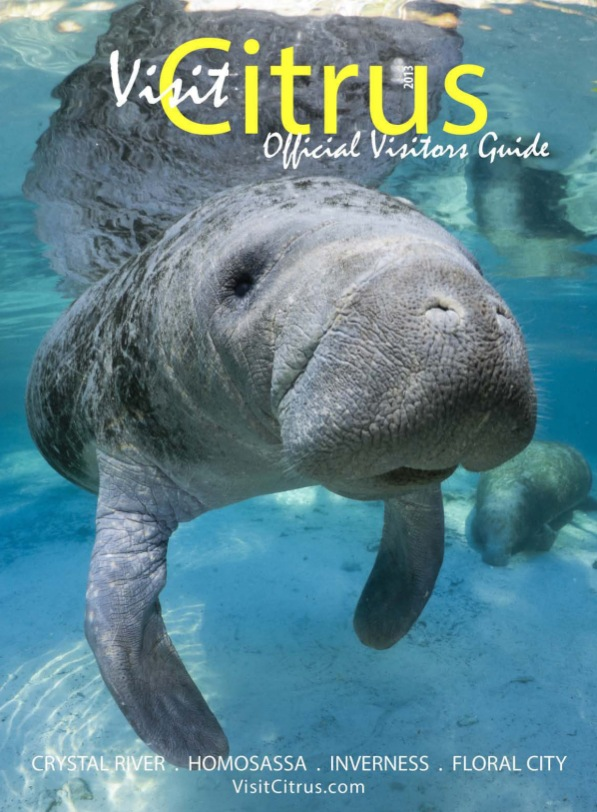Manatee Cover Photograph by Carol Grant, Visit Citrus Visitors Guide
