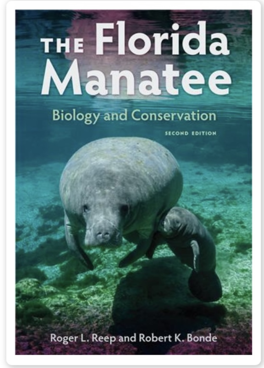 Book,2nd edition,The Florida Manatee,